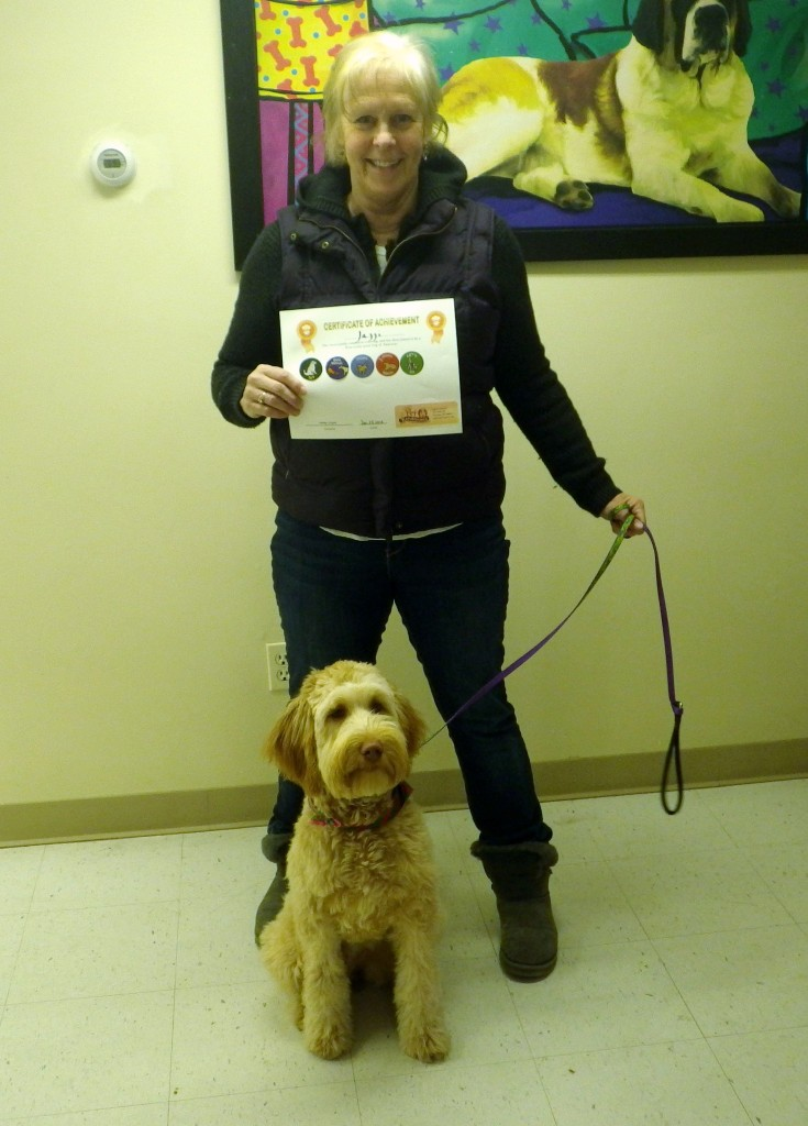 We offer dog training in the Mt Washington Valley of NH