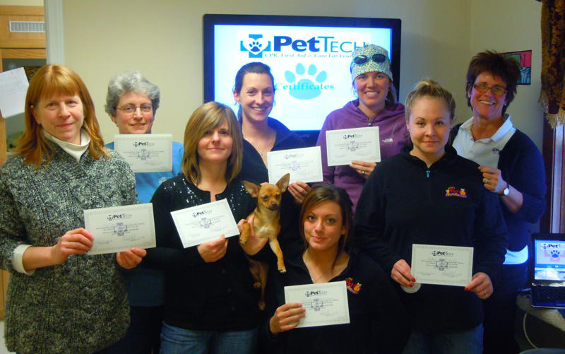 PetTech first aid training for dogs