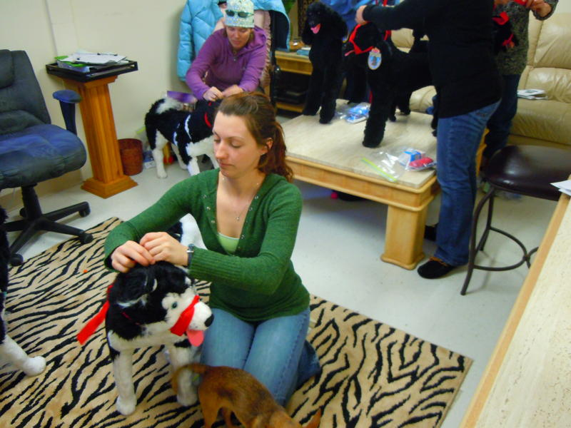 PetTech first aid training