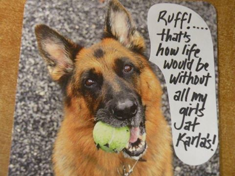 Customers reviews for Karlas Pets