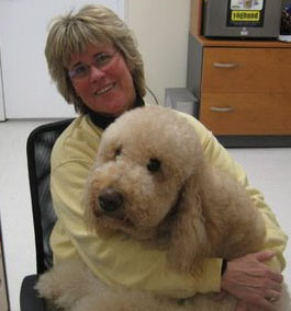 Reputable Doodle Breeder Naples Florida