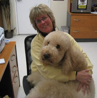 Dog Boarding, Grooming, Dog Daycare, Pet sitter in Conway NH