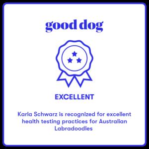 Australian labradoodle breeder good dog award